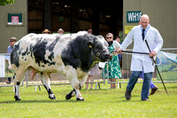 Royal Three Counties Show 2014