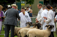 Royal Three Counties Show 2014 (National Rare and Minority Breeds Show)