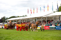 Royal Norfolk Show 2014