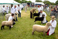 Hertfordshire County Show 2015