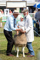 Royal Welsh Show 2013 Filename: Cadd_130722_5199