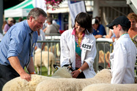 Royal Welsh Show 2013 Filename: Cadd_130722_5304