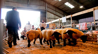 East of England Show 2012