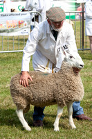 Royal Welsh Show 2013 Filename: Cadd_130722_5181