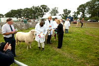 Moreton-in-Marsh Show 2012