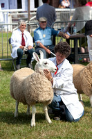 Royal Welsh Show 2013 Filename: Cadd_130722_5182