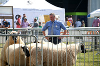 Royal Welsh Show 2013 Filename: Cadd_130722_5249