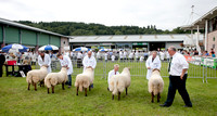 Royal Welsh Show 2012