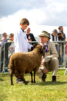 Royal County of Berkshire Show 2015