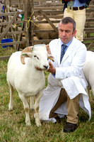 Blakesley Show 2014