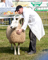 Royal Welsh Show 2013 Filename: Cadd_130722_5198